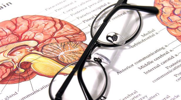 las-iguientes-páginas-un-resumen-de-una-variedad-de-estudios-científicos-sobre-los-efectos-positivos-de-los-aminoácidos